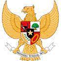 印度尼西亚国家男子足球队